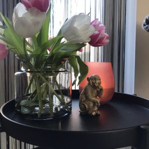 tulpen in vaas zetten