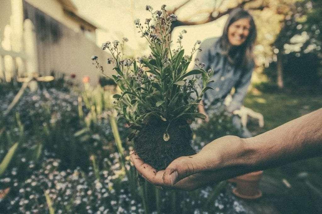 je kleine tuin groot laten lijken